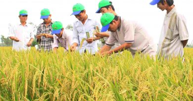 Hai Duong province calls for investment in agriculture