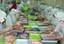 Phú Yên đầu tư hơn 2.100 tỷ đồng phát triển ngành thủy sản