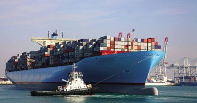 A tale of many seaports: FDI and its expectations