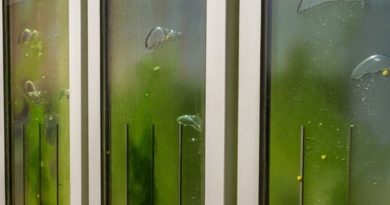 19 reasons why algae may be the next sustainable building technology