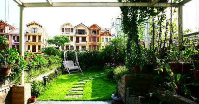 Nhà cải tạo đa chức năng với vườn xanh trên mái