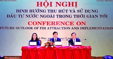 FDI attraction