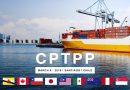 CPTPP và lợi ích ngay lập tức của doanh nghiệp Việt