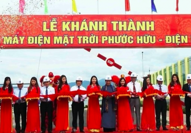 Solar power plant becomes operational in Ninh Thuan