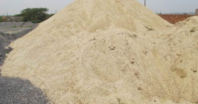 HCM City seeks new construction materials to replace sand