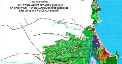 PM approves investment policy for Binh Dinh Becamex IZ