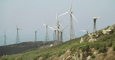 145.9-million-USD wind power plant to be built in Tra Vinh