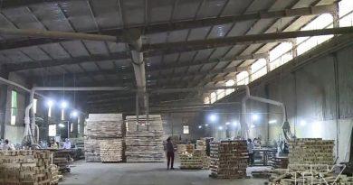 Đầu tư Nhà máy chế biến lâm sản tại Quảng Nam