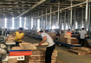 Wood, wooden product exports rise 6.2 pct.
