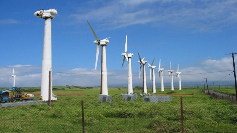 vnf dien gio ninh thuan - Ninh Thuận tìm nhà đầu tư cho dự án điện gió Bim 3.110 tỷ đồng